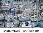 italy  sicily  mediterranean...   Shutterstock . vector #1202585185