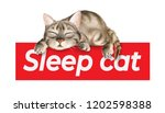 slogan with sleeping cat... | Shutterstock .eps vector #1202598388