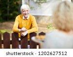 happy senior man in casualwear... | Shutterstock . vector #1202627512
