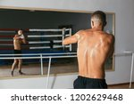 back view of male boxer doing... | Shutterstock . vector #1202629468