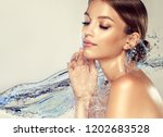 beautiful spa woman with water... | Shutterstock . vector #1202683528