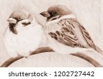 sparrows are little birds.... | Shutterstock . vector #1202727442