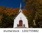 front view of beautiful mid... | Shutterstock . vector #1202755882