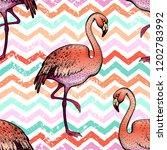 flamingo seamless pattern  hand ... | Shutterstock .eps vector #1202783992