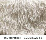 white long hair fur for... | Shutterstock . vector #1202812168