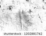 abstract background. monochrome ... | Shutterstock . vector #1202881762