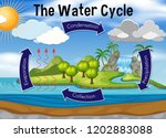 science of water cycle... | Shutterstock .eps vector #1202883088