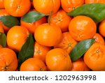 Fresh Mandarin Oranges Fruit O...