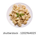 plate of traditional russian... | Shutterstock . vector #1202964025