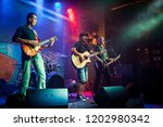 band performs on stage  rock... | Shutterstock . vector #1202980342
