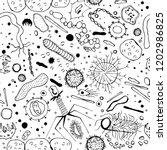 microbiology seamless pattern... | Shutterstock .eps vector #1202986825