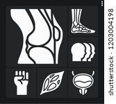 set of 6 male filled icons such ... | Shutterstock .eps vector #1203004198