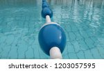 swimming pool with floating buoy | Shutterstock . vector #1203057595