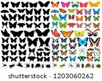 butterflies and insects  set | Shutterstock .eps vector #1203060262