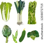 beautiful bright graphic green... | Shutterstock .eps vector #1203072715