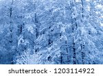 winter forest covered with snow | Shutterstock . vector #1203114922