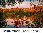 autumn colors  autumn colorful... | Shutterstock . vector #1203115708