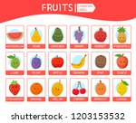 a set of educational cards for... | Shutterstock .eps vector #1203153532