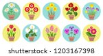 home flowers in the pots. set... | Shutterstock .eps vector #1203167398
