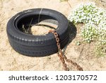 old worn car tire tied with... | Shutterstock . vector #1203170572