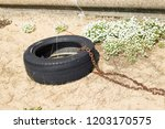 old worn car tire tied with... | Shutterstock . vector #1203170575