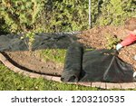 lay garden fleece | Shutterstock . vector #1203210535