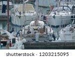 italy  sicily  mediterranean...   Shutterstock . vector #1203215095