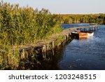 old wooden dock on ludas lake...   Shutterstock . vector #1203248515