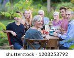 summertime. a family of three... | Shutterstock . vector #1203253792