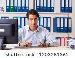 young handsome businessman...   Shutterstock . vector #1203281365