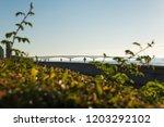 view of the bridge over the... | Shutterstock . vector #1203292102
