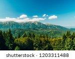 carpathian mountains landscape... | Shutterstock . vector #1203311488