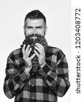 farmer shows his harvest. man...   Shutterstock . vector #1203408772