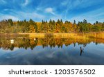autumn view of colorful... | Shutterstock . vector #1203576502
