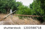 rustic gate blocking path to... | Shutterstock . vector #1203588718