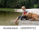 blond boy and a large brown dog ... | Shutterstock . vector #1203594712