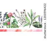 watercolor summer illustration...   Shutterstock . vector #1203596422
