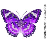 Stock photo purple butterfly isolated on white background 120361018