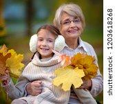 closeup autumn portrait of... | Shutterstock . vector #1203618268
