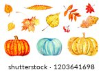 set of different colorful...   Shutterstock . vector #1203641698
