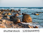 stony seacoast of the baltic... | Shutterstock . vector #1203644995