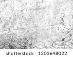 abstract background. monochrome ... | Shutterstock . vector #1203648022