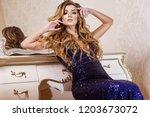 sexy woman in dark evening...   Shutterstock . vector #1203673072