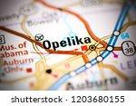 opelika. alabama. usa on a map | Shutterstock . vector #1203680155