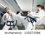 An Image Of A Martial Arts...