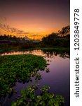 beautiful golden hour at kali... | Shutterstock . vector #1203849778