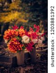 Colorful Flower Decoration...