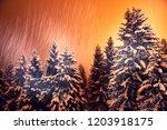 evening snowfall in the...   Shutterstock . vector #1203918175