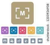 camera manual settings mode... | Shutterstock .eps vector #1203926938