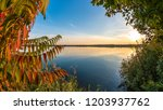 golden fall  colorful leaves ... | Shutterstock . vector #1203937762